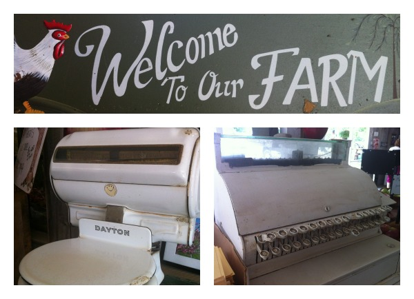 Welcome to the Farm Collage